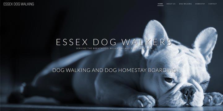 Essex Dog Walker